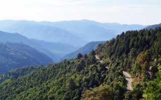 Shoghi – Weekend getaway near Shimla